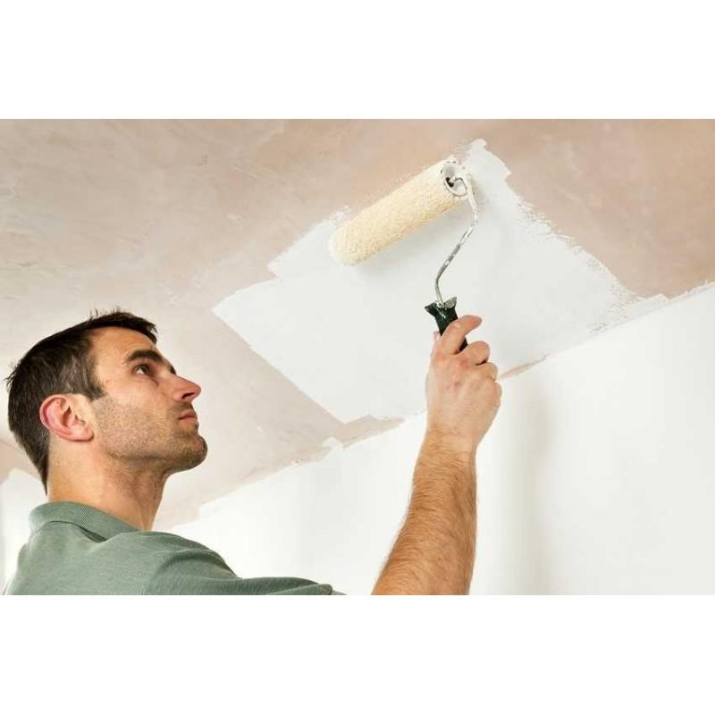 Pintura antimanchas sin olor para paredes y techos - Pinturas especiales para paredes ...