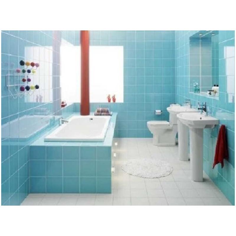 Pintura de azulejos especial ba o y cocina colores a la carta - Pintura especial para banos ...