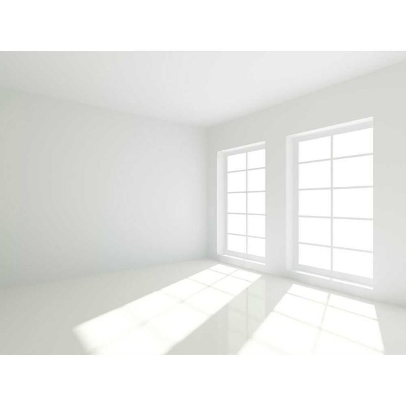 Pintura pl stica blanca mate extra interior exterior - Oferta pintura interior ...