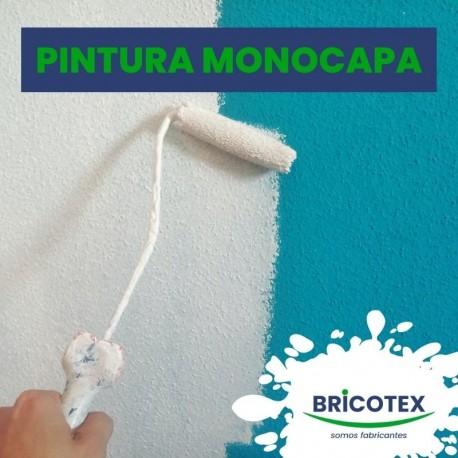 Pintura Plástica Monocapa en Colores