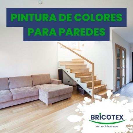 Pintura Plástica Interior en Colores